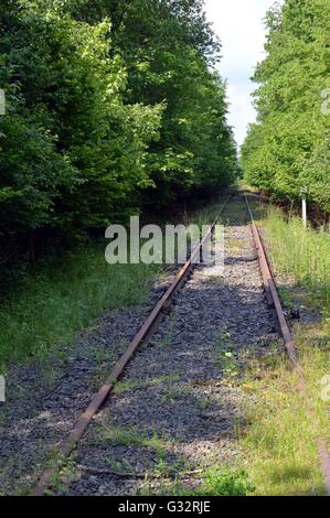 Abandoned railroad track taking off through the forest. - Stock Photo