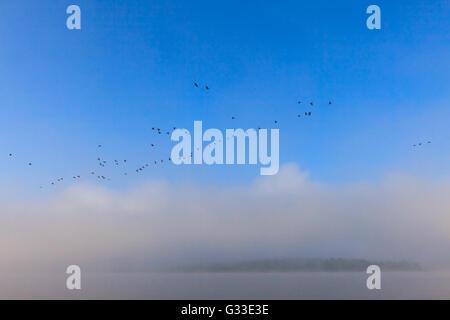 Autumn fishing. Misty dawn over the Volga 70