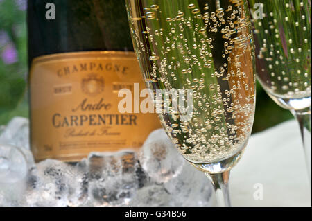 Close-up on freshly poured glasses of Andre Carpentier Champagne with bottle iced wine cooler behind on alfresco - Stock Photo