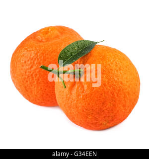 Two tangerines fruit with leaf on white background.Closeup. - Stock Photo