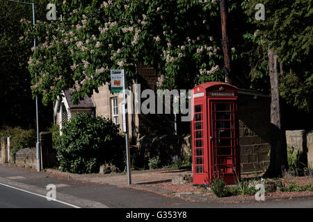vintage K6 model British red phone box next to a bus stop in Longhirst village Northumberland England - Stock Photo