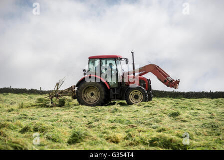 A red tractor turning grass to dry in a summer hay meadow in the English countryside.  Father and son inside the - Stock Photo