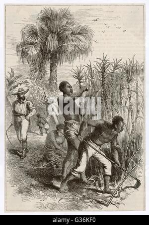 History of my slavery part 1 bondage hd f4 - 1 part 4