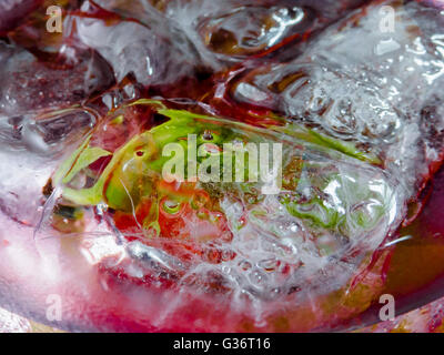 Closeup of Glass containing bubbling clear liquid and lemon slices and ice cubes - Stock Photo