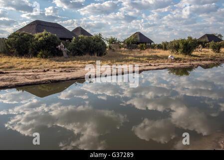 Nehimba Safari Lodge Hwange national Park Zimbabwe - Stock Photo