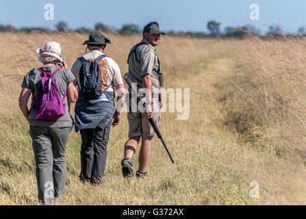 A walking safari at Nehimba Seeps in Hwange National Park Zimbabwe - Stock Photo