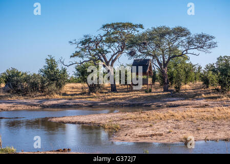 Covered hide at a waterhole near Nehimba in Hwange national park - Stock Photo