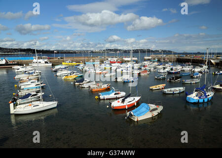 Boats in Paignton harbour, Devon, England, UK - Stock Photo