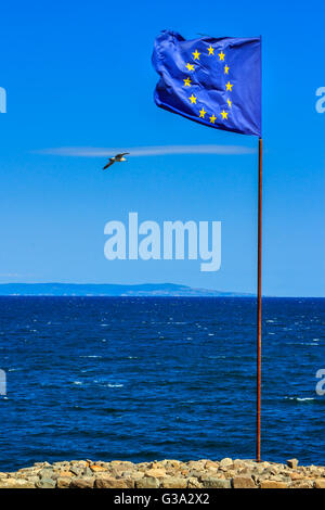 waving European flag is set on a stone strengthening, next to the sea shore. seagulls flying around the flag. can - Stock Photo
