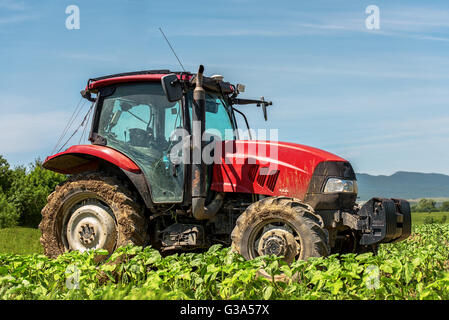 Harvesting crop by red tractor in austrian alpine green mountain fields with fluffy clouds on sky - Stock Photo