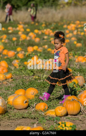 Young girl enjoying a stroll through a pumpkin patch at The Gorge White House Fruit Stand near Hood River, Oregon, - Stock Photo