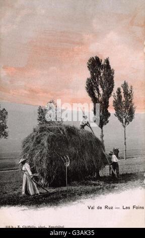 Making Hay whilst the sun shines in Switzerland     Date: circa 1904 - Stock Photo