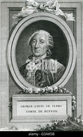 Georges-Louis Leclerc, Comte de Buffon (1707-1788) - French naturalist, mathematician, cosmologist and encyclopedic - Stock Photo