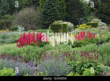Waterperry Gardens in early june.  Oxfordshire, England - Stock Photo