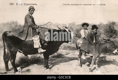 Turkestan - One man riding a bull and two on a donkey!     Date: circa 1909 - Stock Photo
