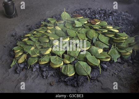 Dal paniya a common pulse dish on charcoal and covered with leaves. Madhya Pradesh, India - Stock Photo