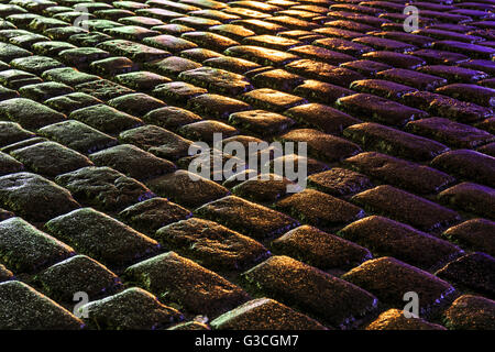 Wet pavement at night as an abstract background - Stock Photo