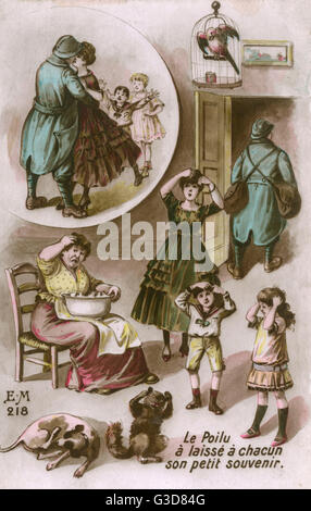 French soldier returns home from the front bearing some unwelcome guests in the form of fleas, which subsequently - Stock Photo