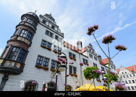 town hall, Germany, Sachsen, Saxony, , Torgau - Stock Photo