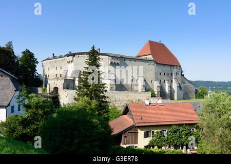 castle, Germany, Bayern, Bavaria, Oberbayern, Rupertiwinkel, Upper Bavaria, Tittmoning - Stock Photo