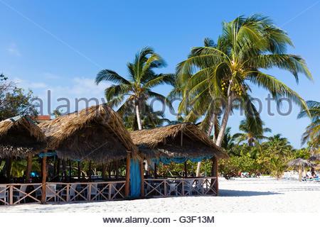 Vacationers under palms on the beach, Guardalavaca, province Sancti Spiritus, Cuba, the Greater Antilles, the Caribbean - Stock Photo