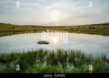 Inland Lake with Sun in Summer, Fyns Hoved, Hindsholm, Kerteminde, Funen, Baltic Sea, Denmark - Stock Photo