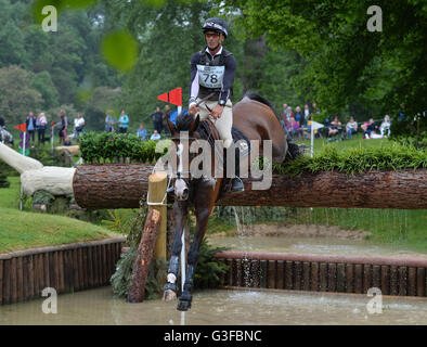 Andrew Nicholson riding Jet Set IV in action in the Equi-trek CCI*** Cross Country event during day three of the - Stock Photo