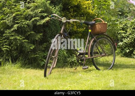 Nice historic bicycle in the woods - Stock Photo