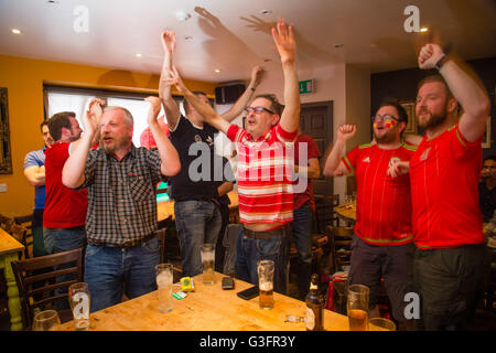 Aberystwyth, Wales, UK. 11th June, 2016.  EURO 2016: Avid welsh supporters in the Hen Llew Du (OLd Black Lion) pub - Stock Photo