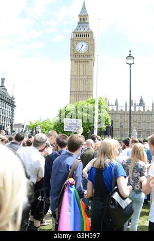 London, UK. 25th June 2016. Protesters gather in front of the UKN Parliament. Credit: Marc Ward/Alamy Live News - Stock Photo
