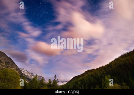 The starry sky with blurred motion clouds and bright moonlight, captured from larch tree woodland. Expansive night - Stock Photo