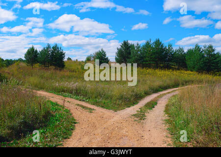 Rural landscape with crossroad on hill in forest - Stock Photo