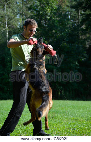 Master and his obedient German Shepherd dog - Stock Photo