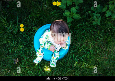 Overhead view of baby boy sitting in garden on baby support seat - Stock Photo