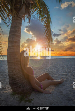 Young woman leaning against palm tree watching sunset on Miami Beach, Florida, USA - Stock Photo