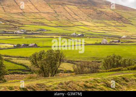 Patched landscape viewed from the Blasket Centre, Dunquin, Dingle Peninsula, County Kerry, Munster Province, Republic - Stock Photo