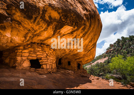 House on Fire ruin on BLM land in South Fork of Mule Canyon in (proposed, as of 2016) Bears Ears National Monument, - Stock Photo