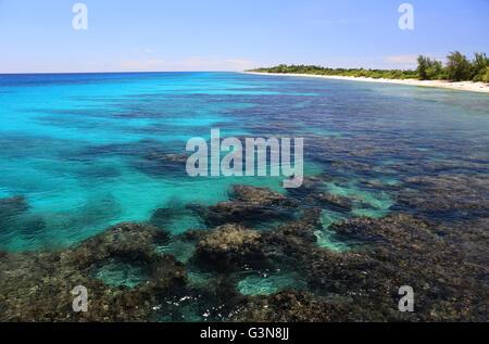 Coral reef in clear ocean water, Christmas Island, Kiribati. - Stock Photo