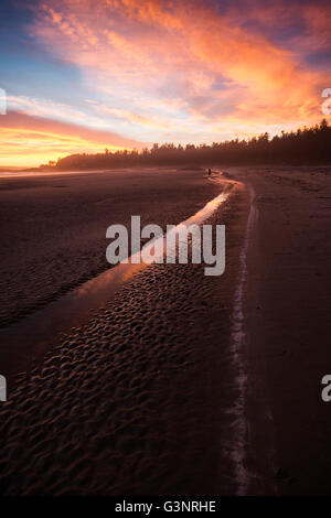 Dramatic sunset with pink, orange and blue colors on Chesterman beach, Tofino, Vancouver Island, British Colombia, - Stock Photo