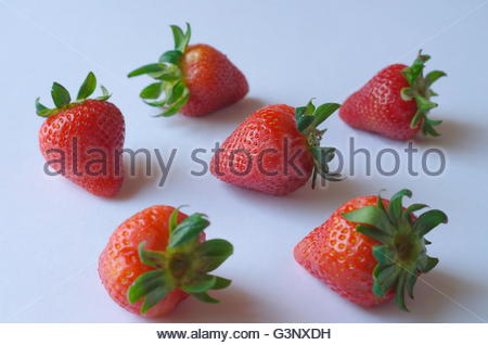 Closeup studio shot six fresh ripe red strawberries on plain white background natural light with stems and leaves. - Stock Photo