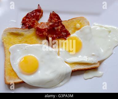 Bacon and egg - Stock Photo