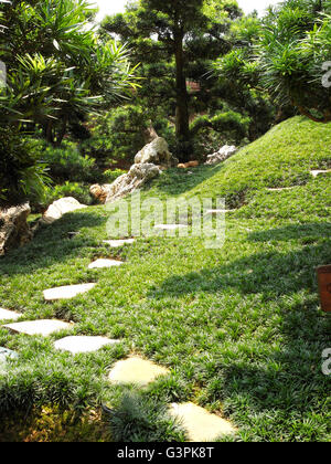 japan style garden grass stone step road green landscape hong kong tree - Stock Photo