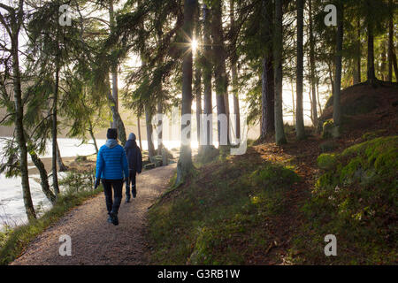 Sweden, Vastergotland, Lerum, Stamsjon, Mother and son (12-13) walking in forest - Stock Photo