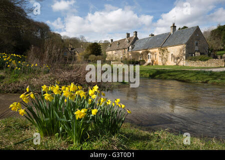 Daffodils and Cotswold stone cottages by the River Eye, Upper Slaughter, Cotswolds, Gloucestershire, England, United - Stock Photo