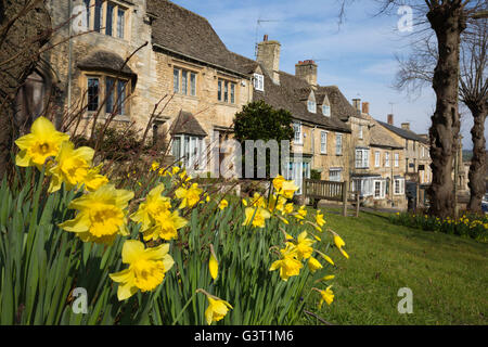 Cotswold stone cottages and Daffodils along The Hill, Burford, Cotswolds, Oxfordshire, England, United Kingdom, - Stock Photo
