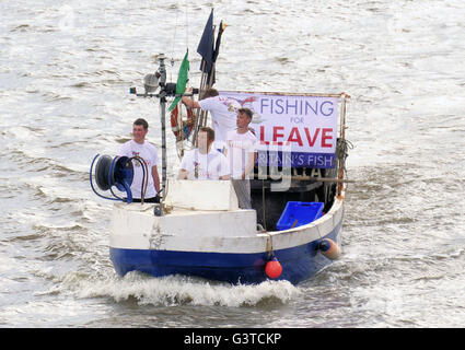 London.UK.15th June 2016.The Vote Leave flotilla arrives at the Houses of Parliament, with supporters on Westminster - Stock Photo