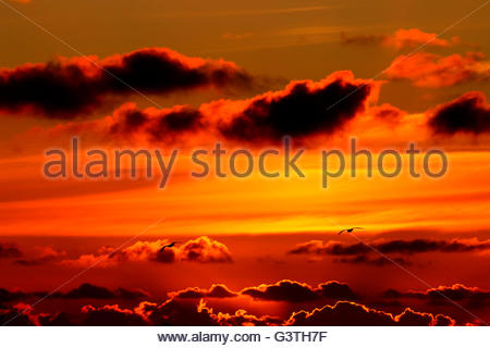sunset over wangerooge, friesland district, lower saxony, germany, north sea - Stock Photo