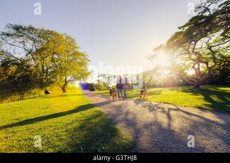Sweden, Skane, Malmo, Malmo Folkets park, Mid-adult couple with dogs - Stock Photo