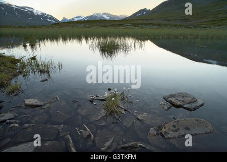 Sweden, Sarek National park, Pastavagge, Scenic view of landscape - Stock Photo