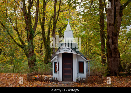 WASHINGTON - Wildwood Chapel, a small roadside place of worship among the moss-covered trees along US Highway 20 - Stock Photo
